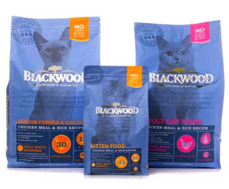 Makanan Kucing Yang Bagus - Blackwood